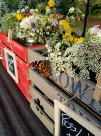 Flower Truck - Posy Wagon flowers close up